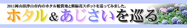 岡山県津山市2011年「ホタル&紫陽花をめぐる」
