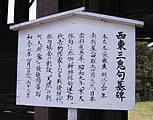 成道寺/津山瓦版
