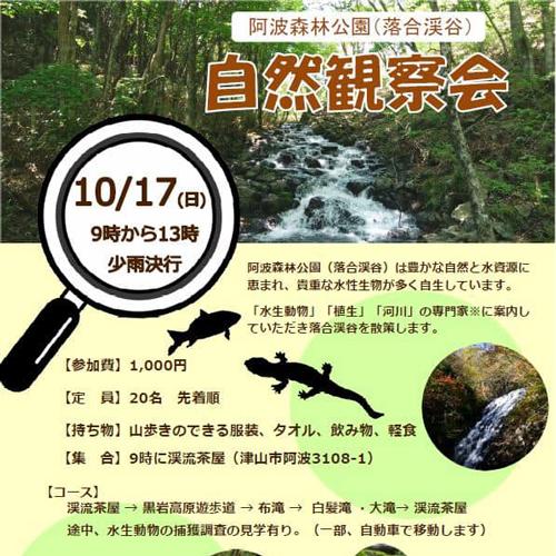 阿波森林公園(落合渓谷) 自然観察会