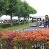 津山高専 弥生祭 (2010年10/30(土)/31(日) )