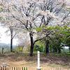 岩屋城跡(岡山県指定史跡)