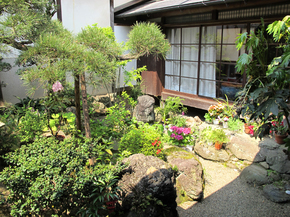m_nakaniwa1.jpg