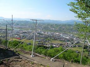 shinai4.jpg