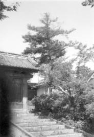 愛山66.jpg