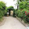 美作市土居の岩本さん宅のバラです。