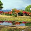 2012年11月14日の衆楽園のモミジです。