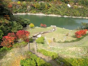 tsugawa21.jpg