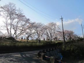 kagura5.jpg