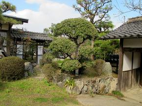 yonei3.jpg