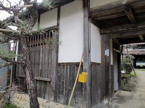 yonei5.jpg