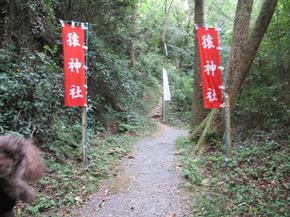 中山z13.jpg