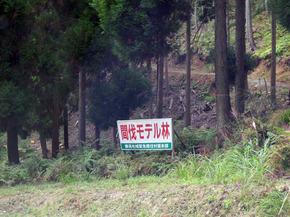 kanbatsu2.jpg