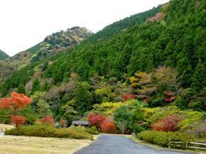 tsugawa15.jpg