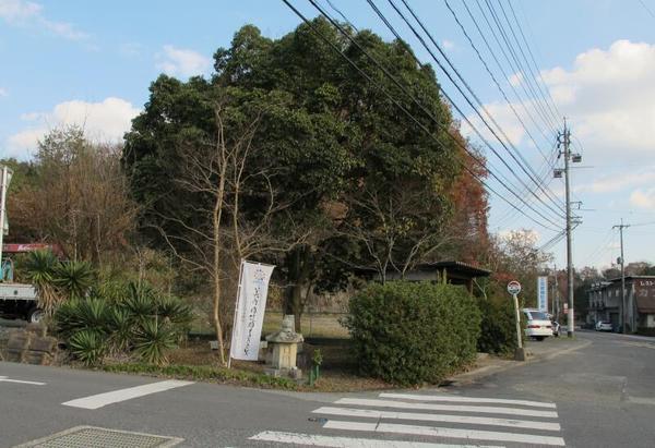 nakishimizu6.jpg