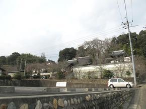 senkouji_taru.jpg