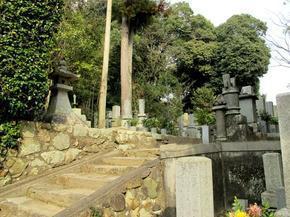 senkouji_taru2.jpg