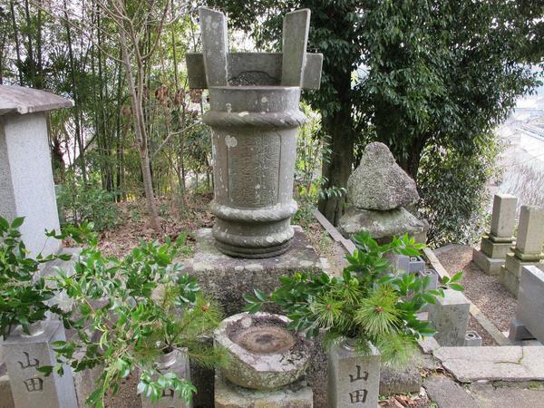 taru5.jpg