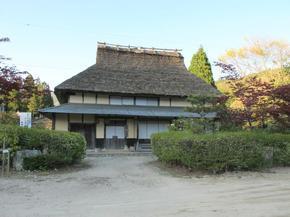 koshiwata15.jpg