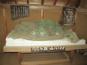 koshiwata8.jpg