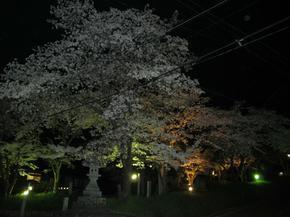 sirakami11.jpg