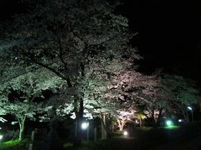 sirakami32.jpg