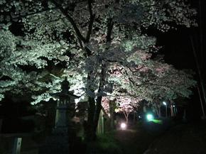 sirakami33.jpg