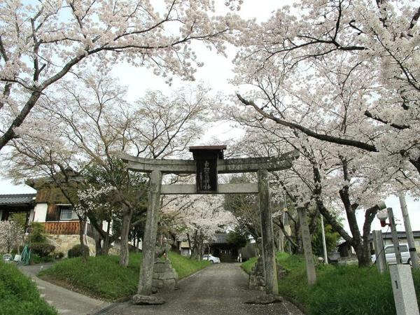 sirakami38.jpg