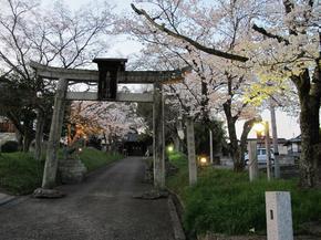 sirakami5.jpg