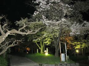 sirakami7.jpg