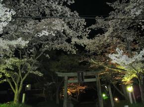 sirakami8.jpg