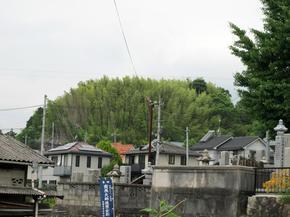 妙見山1.jpg