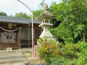 oosumi10.jpg