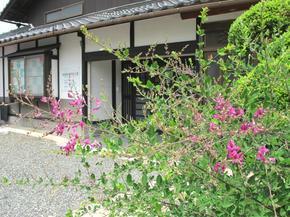 yasuda8.jpg