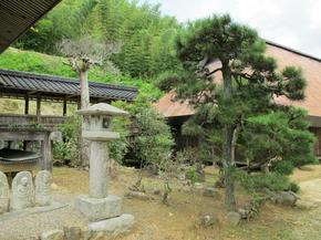 zen11.jpg