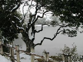 2015_syuraku10.jpg
