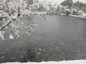 2015_syuraku4.jpg