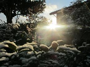 shirakami16.jpg