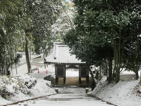 shirakami90.jpg