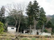 miura35.jpg
