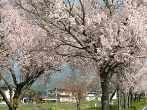 higashi5.jpg