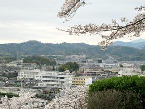 kagurao01.jpg