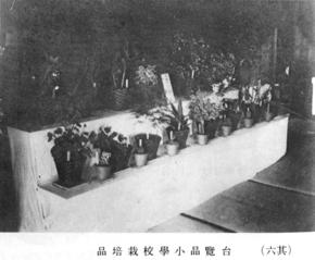 800昭和天皇6059.jpg