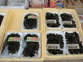 miyagawa12.jpg