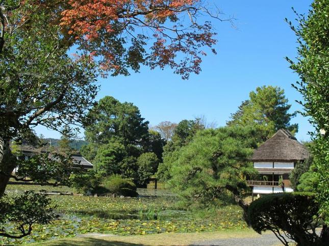 syuraku60.jpg