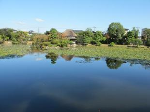 syuraku71.jpg