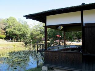 syuraku81.jpg
