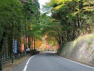 kagamino-2.jpg