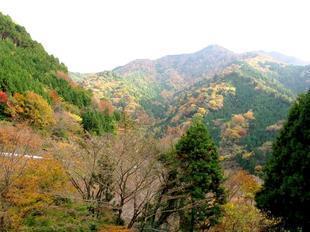 津川35.jpg