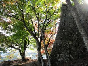 鶴山紅葉28.jpg