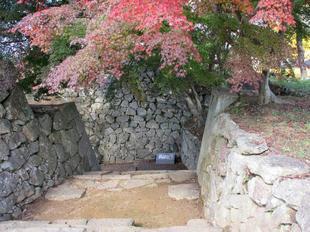 鶴山紅葉9.jpg